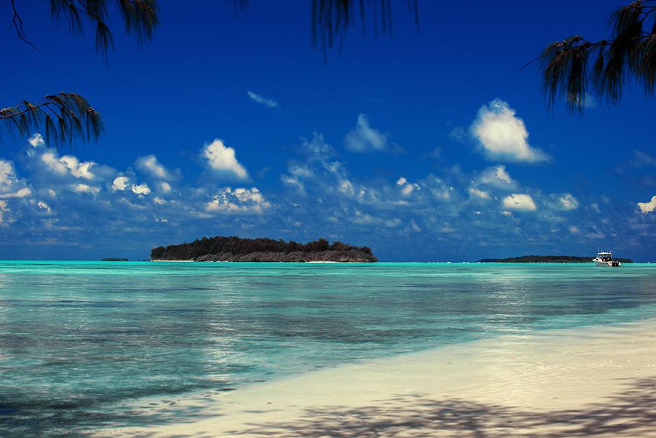 Private Beach Picnic Tour